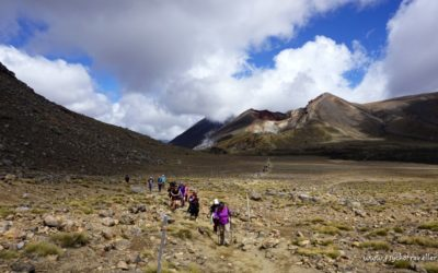 Hiking The Tongariro Alpine Crossing With Adrift Outdoor Adventures