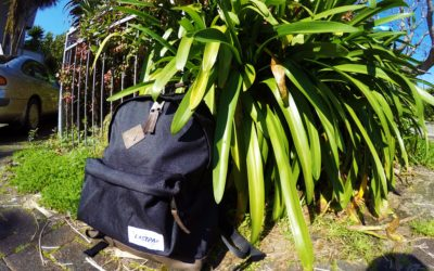 Eastpak Wyoming Into The Out | Backpack Review |